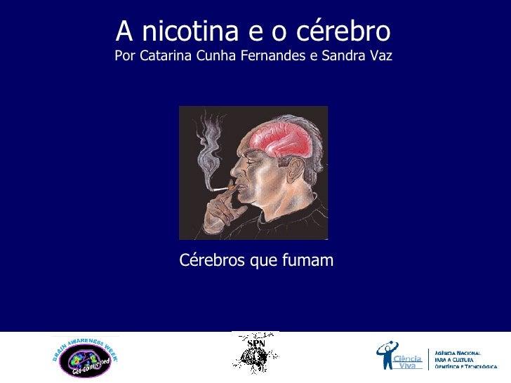 Cérebros que fumam A nicotina e o cérebro Por Catarina Cunha Fernandes e Sandra Vaz