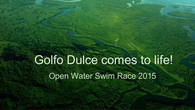 Golfo Dulce comes to life! Open Water Swim Race 2015