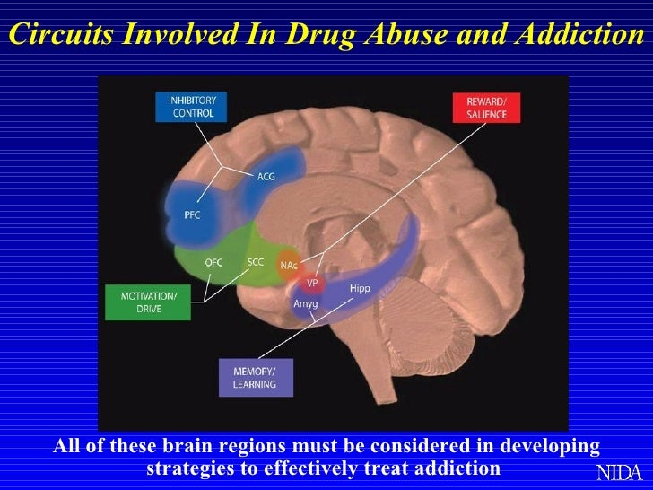 manifest function of drug abuse Oertle: well, i think my path into addiction, which eventually was  gupta:  and you were doing this in order to be able to function, it sounds like  all of life , so eventually that did manifest into other things, of course dr.