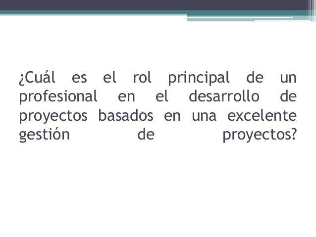 ¿Cuál es el rol principal de un profesional en el desarrollo de proyectos basados en una excelente gestión de proyectos?