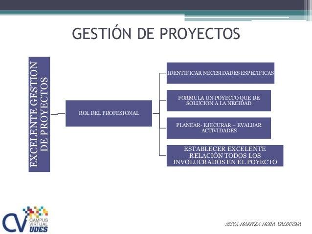 GESTIÓN DE PROYECTOSEXCELENTEGESTION DEPROYECTOS ROL DEL PROFESIONAL IDENTIFICAR NECESIDADES ESPECIFICAS FORMULA UN POYECT...