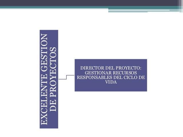 EXCELENTEGESTION DEPROYECTOS DIRECTOR DEL PROYECTO: GESTIONAR RECURSOS RESPONSABLES DEL CICLO DE VIDA