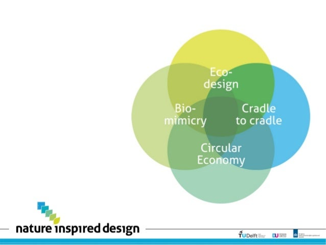Differences Ecodesign: Biomimicry: Cradle to cradle: Circular Economy: Ecodesign: LifeCycle Analysis Biomimicry: Life's Pr...