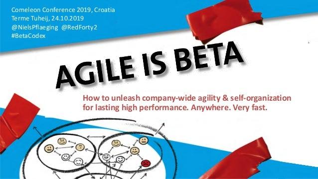 Comeleon Conference 2019, Croatia Terme Tuheij, 24.10.2019 @NielsPflaeging @RedForty2 #BetaCodex How to unleash company-wi...