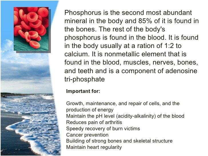 Example Biology IA