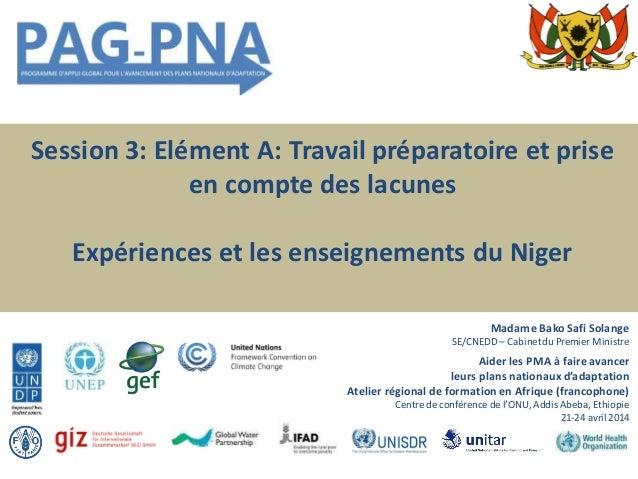 Session 3: Elément A: Travail préparatoire et prise en compte des lacunes Expériences et les enseignements du Niger Madame...