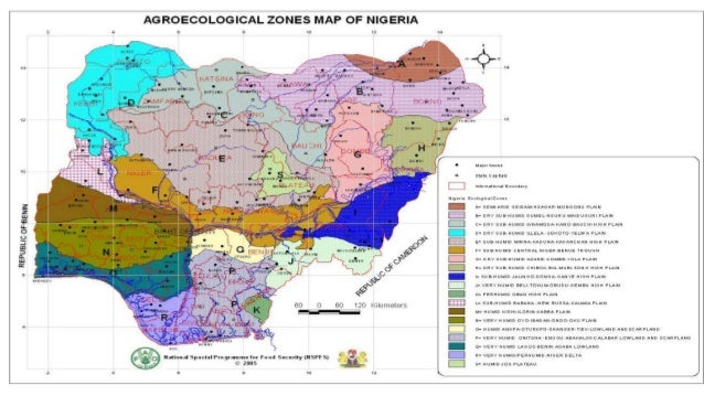 Nature and potentials of the soils for sustainable agricultural production • Geology of Nigeria is dominated by igneous st...