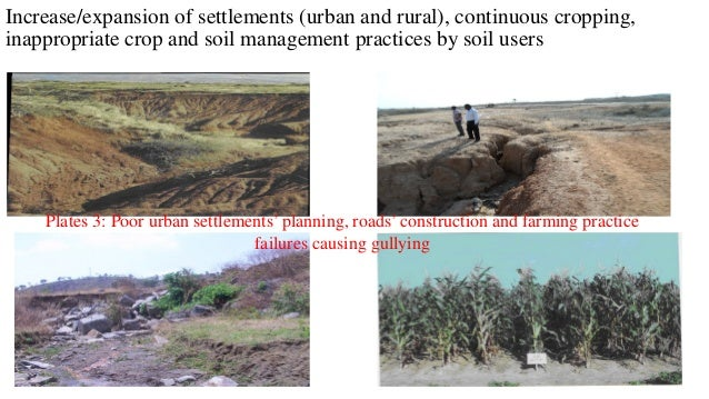 Positive Response to Land Degradation Good ground cover for enhanced soil health, sustainable productivity and use of anim...