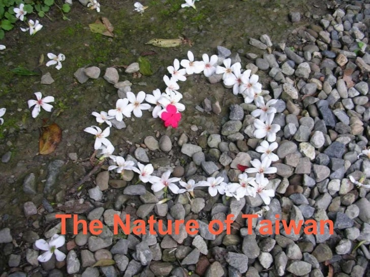 The Nature of Taiwan
