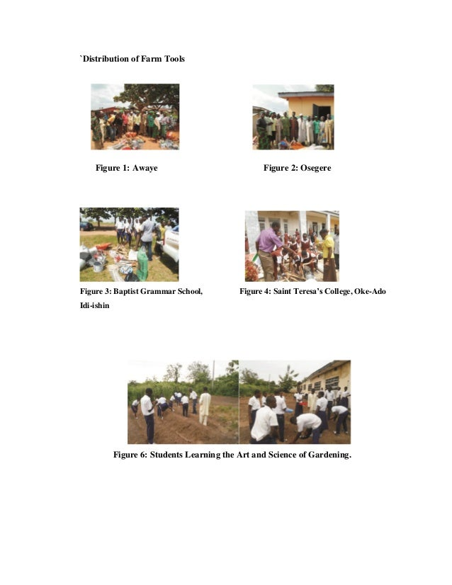 `Distribution of Farm Tools Figure 1: Awaye Figure 2: Osegere Figure 3: Baptist Grammar School, Figure 4: Saint Teresa's C...