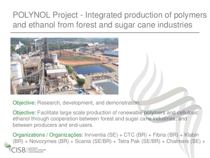 POLYNOL Project - Integrated production of polymersand ethanol from forest and sugar cane industriesObjective: Research, d...