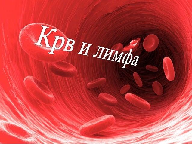 • Течно ткиво • Црвене је боје због хемоглобина, беланчевине која садржи гвожђе • Има улогу: 1. Да од плућа до сваке ћелиј...
