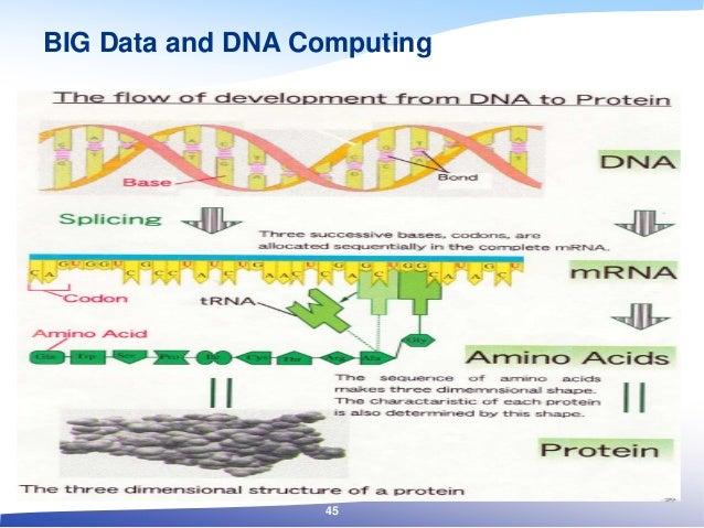 BIG Data and DNA Computing 45