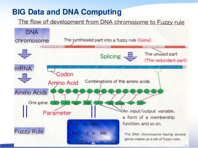 BIG Data and DNA Computing 46