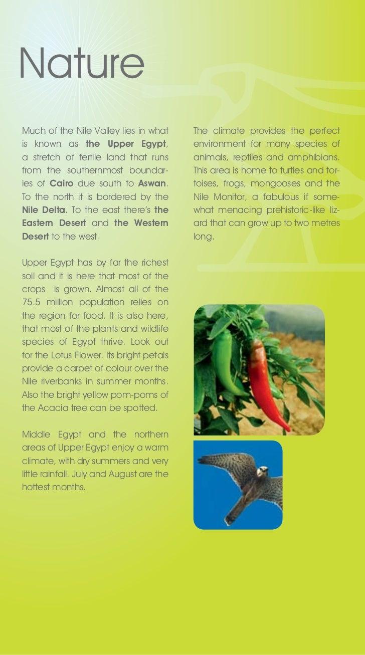 Nile valley brochure