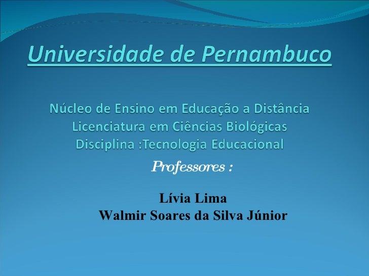 Professores :          Lívia Lima Walmir Soares da Silva Júnior