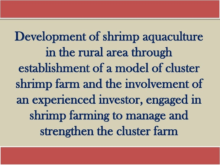Development of shrimp aquaculture      in the rural area through establishment of a model of clustershrimp farm and the in...