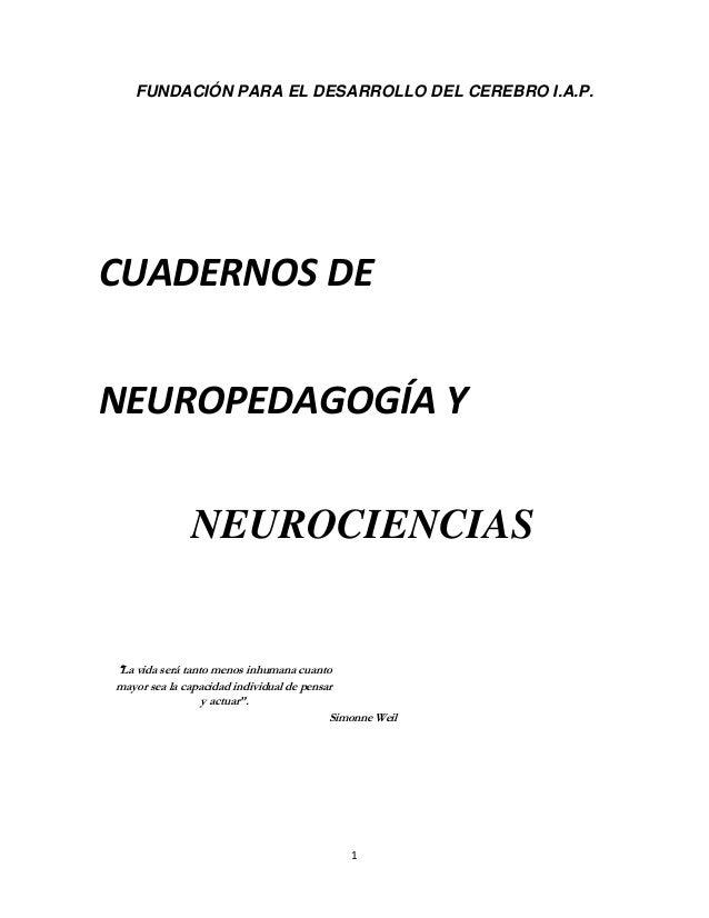 """FUNDACIÓN PARA EL DESARROLLO DEL CEREBRO I.A.P.  CUADERNOS DE NEUROPEDAGOGÍA Y NEUROCIENCIAS  """"La vida será tanto menos in..."""