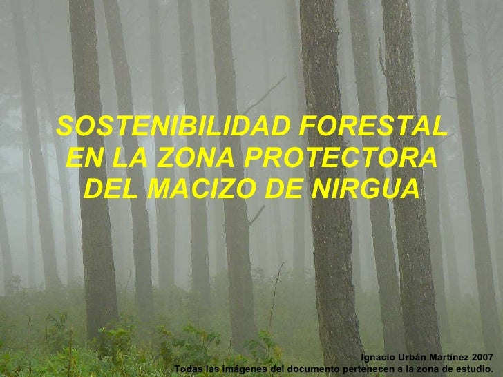 SOSTENIBILIDAD FORESTAL EN LA ZONA PROTECTORA DEL MACIZO DE NIRGUA Ignacio Urbán Martínez 2007 Todas las imágenes del docu...