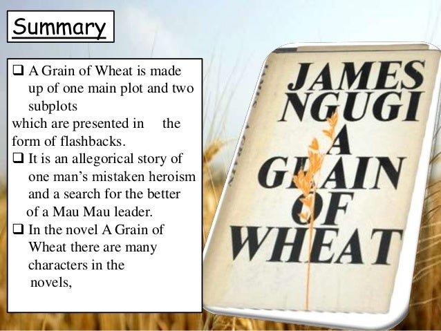 Attempt a critical summary of the novel A Grain of Wheat