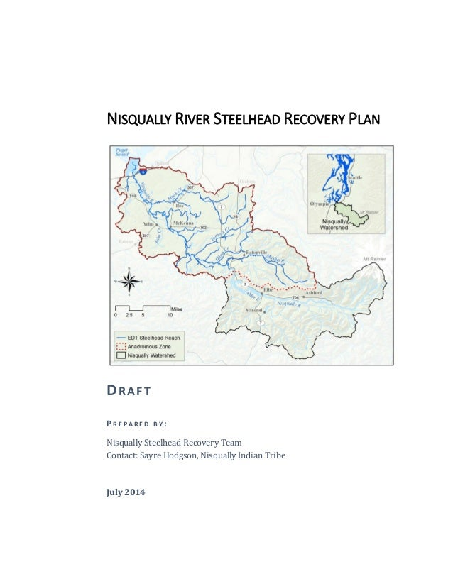 NISQUALLY RIVER STEELHEAD RECOVERY PLAN DRAFT P R E P A R E D B Y : Nisqually Steelhead Recovery Team Contact: Sayre Hodgs...