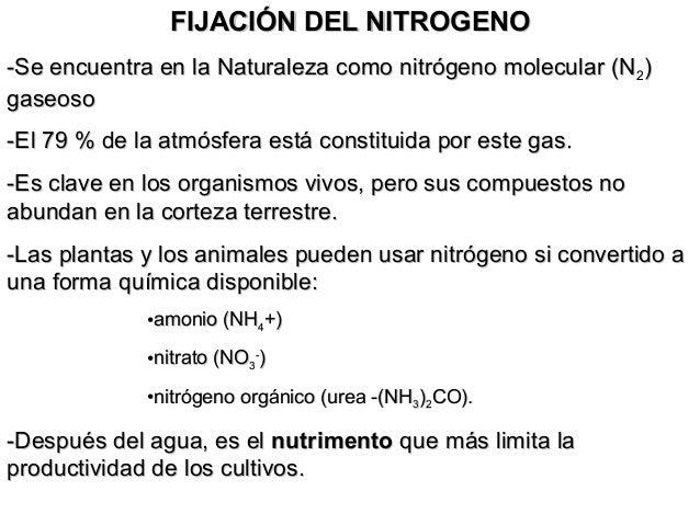 FIJACIÓN DEL NITROGENOFIJACIÓN DEL NITROGENO -Se encuentra en la Naturaleza como nitrógeno molecular (N-Se encuentra en la...