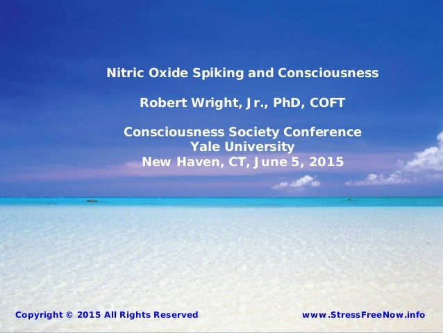 Nitric Oxide Spiking and Consciousness Robert Wright, Jr., PhD, COFT Consciousness Society Conference Yale University New ...