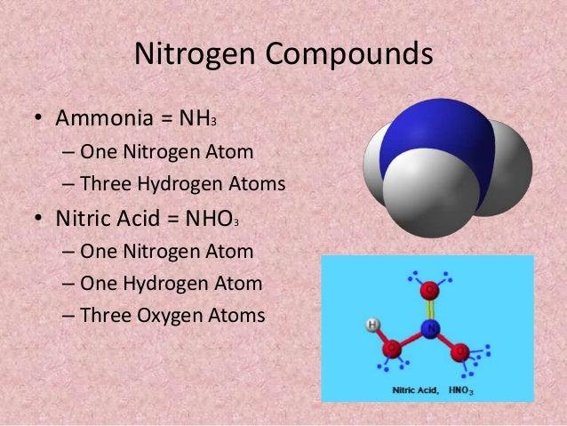 nitrogen atom