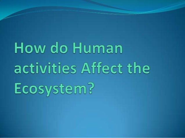 Human activities do the logging