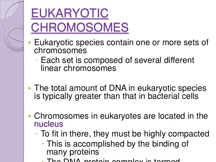Compare and contrast Eukaryotic and Prokaryotic