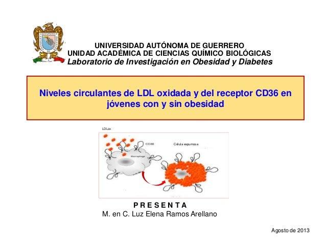 Niveles circulantes de LDL oxidada y del receptor CD36 en jóvenes con y sin obesidad UNIVERSIDAD AUTÓNOMA DE GUERRERO UNID...