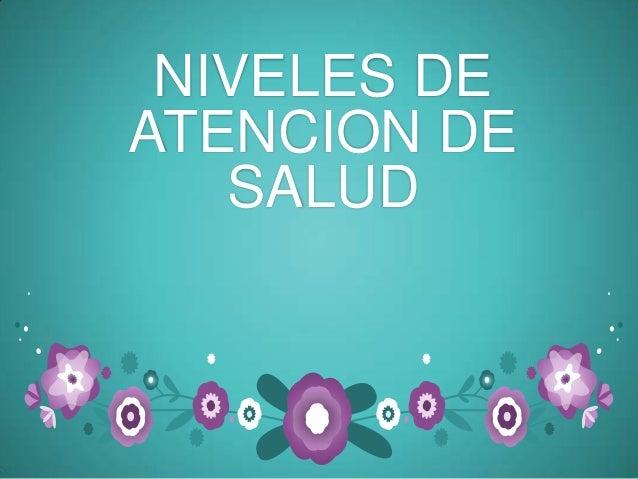 NIVELES DE ATENCION DE SALUD