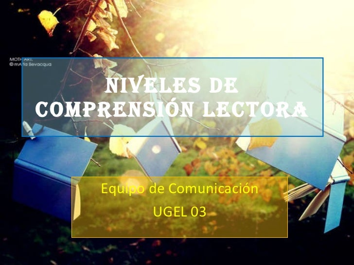 Niveles de comprensión lectora - UGEL 03