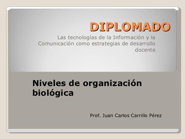 DIPLOMADO        Las tecnologías de la Información y la  Comunicación como estrategias de desarrollo                      ...