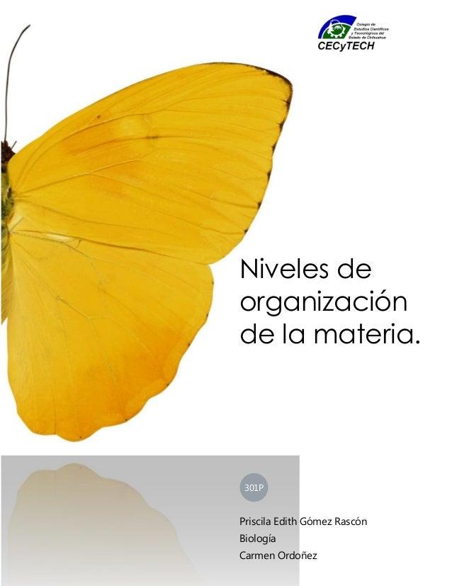Niveles de organización de la materia. Priscila Edith Gómez Rascón Biología Carmen Ordoñez 301P