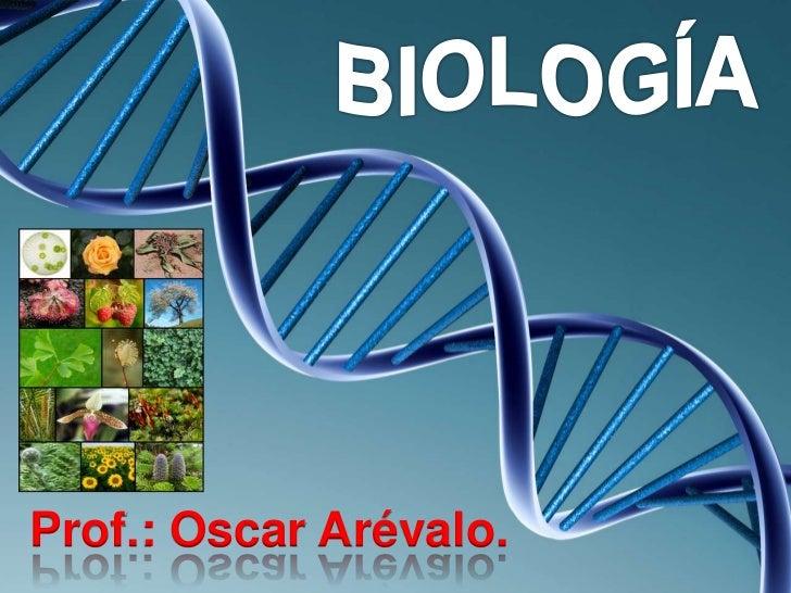 Prof.: Oscar Arévalo.         PRESIONE LA BARRA ESPACIADORA PARA AVANZAR EN LOS CONTENIDOS                                ...