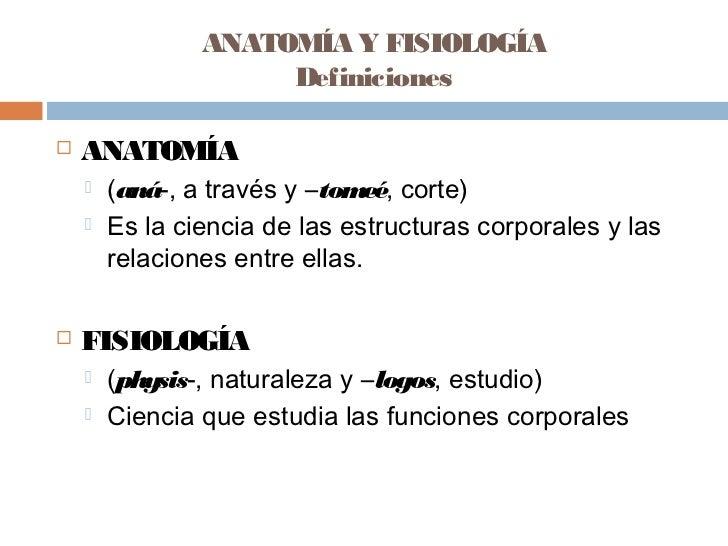 Niveles de organizacion (2)