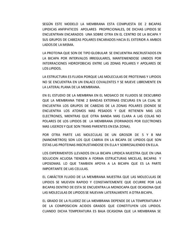 SEGÚN ESTE MODELO LA MEMBRANA ESTA COMPUESTA DE 2 BICAPAS LIPIDICAS ANFIPATICOS APOLARES PROPRCIONALES, DE DICHAS LIPIDOS ...