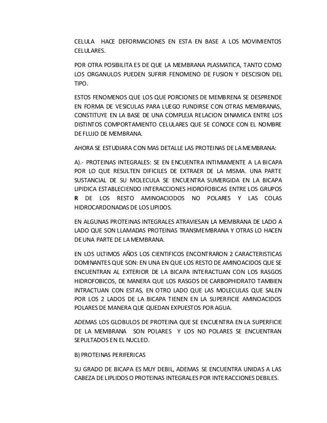 CELULA HACE DEFORMACIONES EN ESTA EN BASE A LOS MOVIMIENTOS CELULARES. POR OTRA POSIBILITA ES DE QUE LA MEMBRANA PLASMATIC...