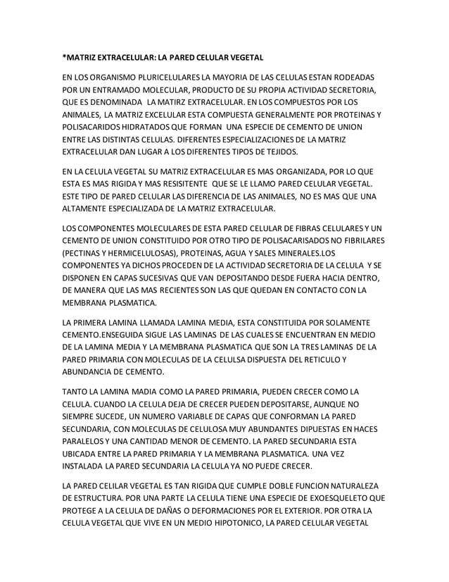 *MATRIZ EXTRACELULAR: LA PARED CELULAR VEGETAL EN LOS ORGANISMO PLURICELULARES LA MAYORIA DE LAS CELULAS ESTAN RODEADAS PO...