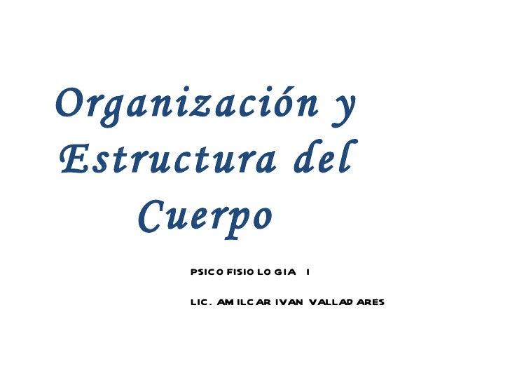 Organización y Estructura del Cuerpo PSICOFISIOLOGIA  I LIC. AMILCAR IVAN VALLADARES