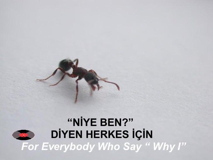 """"""" NİYE BEN?""""  DİYEN HERKES İÇİN For Everybody Who Say """" Why I"""""""