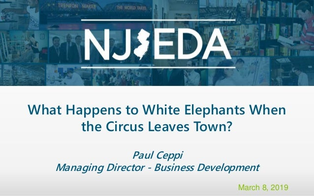 What Happens to White Elephants When the Circus Leaves Town? Paul Ceppi Managing Director - Business Development March 8, ...