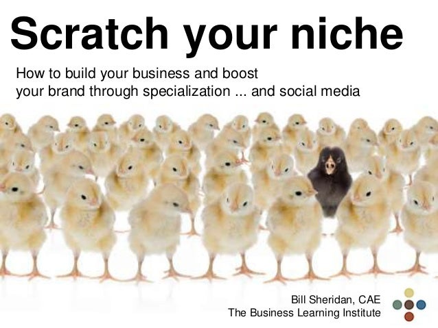 Scratch your niche How to build your business and boost your brand through specialization ... and social media Bill Sherid...