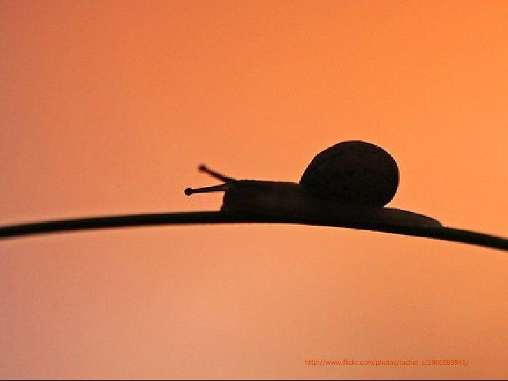 http://www.flickr.com/photos/rachel_s/2906095941/