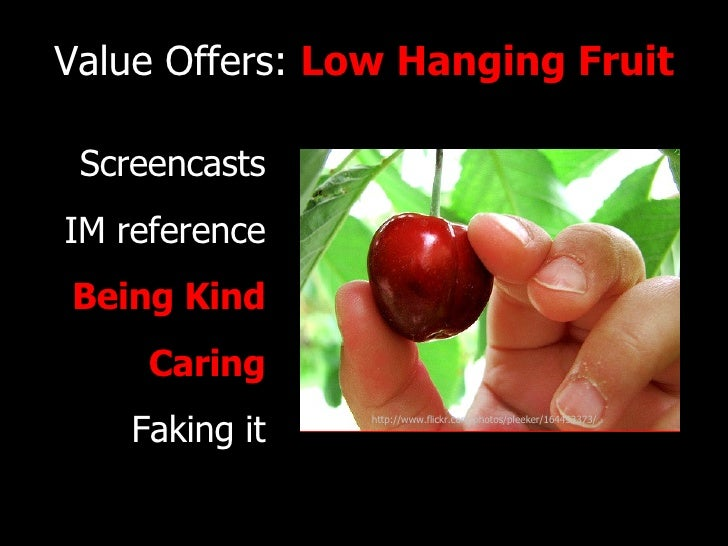 Value Offers:  Low Hanging Fruit Screencasts IM reference Being Kind Caring Faking it http://www.flickr.com/photos/pleeker...