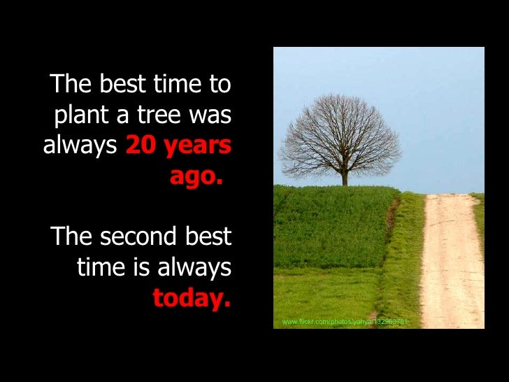 The best time to plant a tree was always  20 years ago.   The second best time is always  today. www.flickr.com/photos/yah...