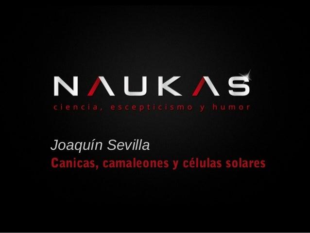 Joaquín Sevilla Canicas, camaleones y células solares
