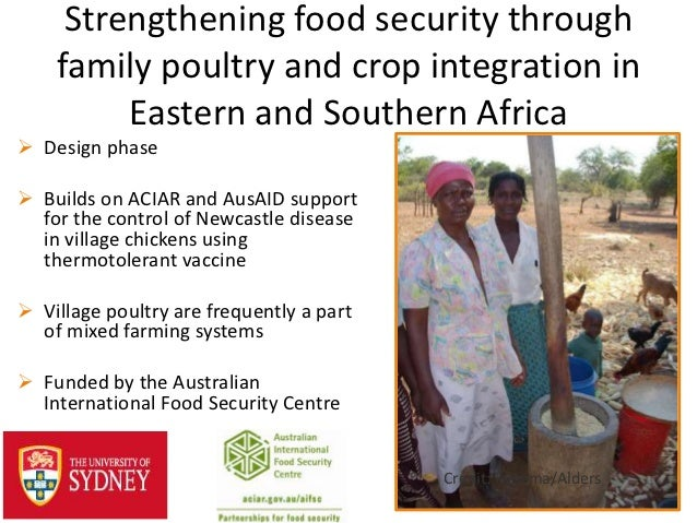 Strengthening food security through    family poultry and crop integration in         Eastern and Southern Africa Design ...