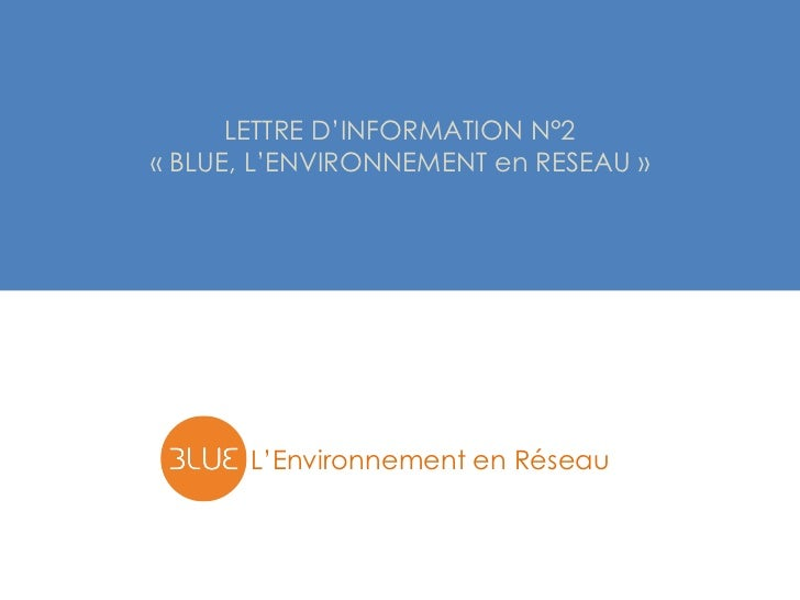 LETTRE D'INFORMATION N°2« BLUE, L'ENVIRONNEMENT en RESEAU »       L'Environnement en Réseau